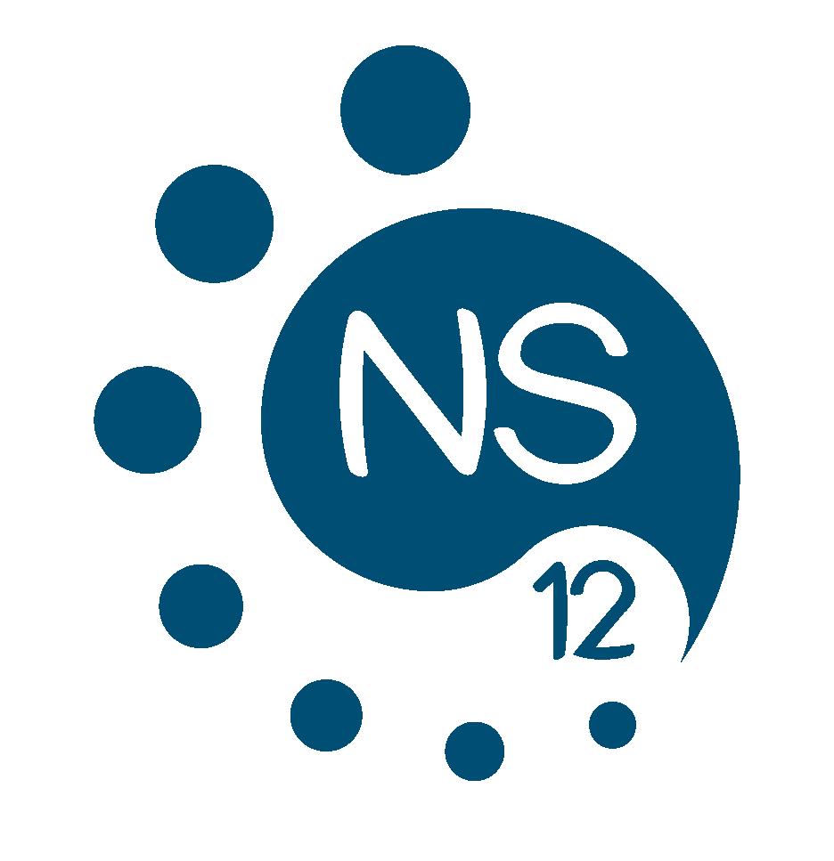 logo NS12 1.2-20
